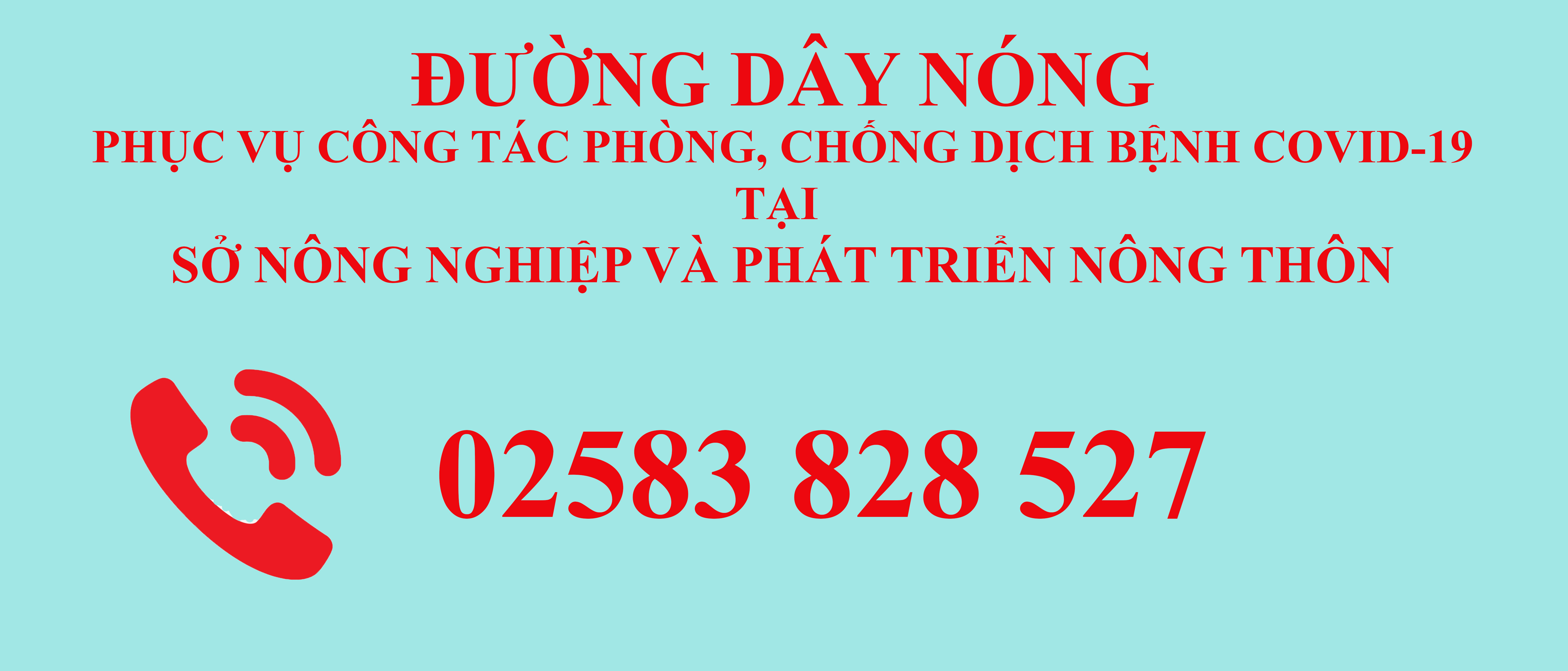hotline dịch